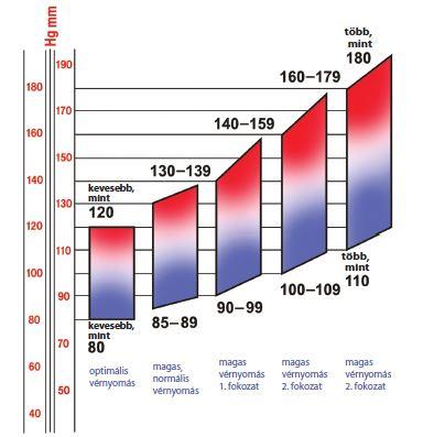 Magas vérnyomás - artériás hipertónia - Krka Magyarország